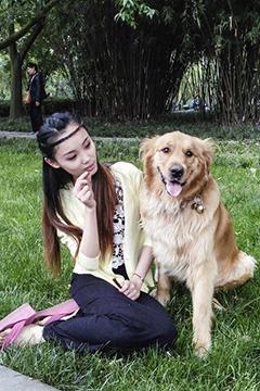 [中兴手机]:拍美女与狗狗