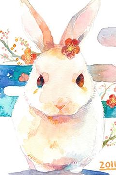 可爱兔兔手机桌面壁纸