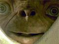 史料揭秘:秦始皇跟外星人有过密切接触?